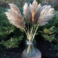 60cm Pampas Grass Dried Flower Reed Wedding Decoration Hay Autumn Home Natural Bouquet Retro Decorative Flowers & Wreaths