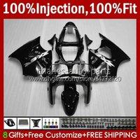 Spritzgießkörper für Kawasaki Ninja ZZR600 600cc 2005 2006 2007 2008 grau glänzende neue Bodyworks 38HC.116 100% Fit ZZR-600 600 CC 05-08 ZZR 600 05 06 07 08 OEM-Verkleidungsset