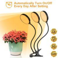 5V LED Grow Light USB Phyto Lamp Sunlike Full Spectrum Tent Phytolamp Hydroponics Plant Seedlings For Flower Fitolampy Box 2835