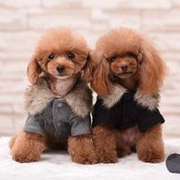 Dog Apparel Fur Collar Windbreaker Clothes Cat Suit Coat Hoodie Pet Puppy Jacket For Dogs Costume