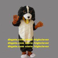 Coker Spaniel Basset Basset Hound Dachshund Bele Overdog собака талисман костюм персонаж памяти сувенирной конференции фото ZX324