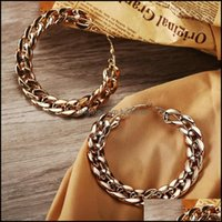 & Hie Jewelrylarge Circle Link Chain Hoop Earrings For Women Female Punk Big Metal Hollow Gold Color Geometric Earring Fashion Jewelry Drop