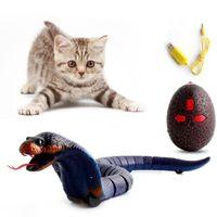 Инфракрасный пульт дистанционного управления Snake RC Snake Cat Toy и яичный гремут для животных уловка животных ужасающее зло, детские игрушки смешные новинка подарок 210510