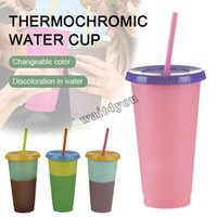 5 Styles Reusable Color Changing Cold Cups Bottles Summer Magic Plastic Coffee Mugs Water Bottles W  Straws Set For Family Friends Cup