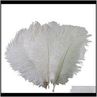 Красочные 2022 дюйма 5055 см страусы перья перья для центральной свадебной вечеринки декор событий праздничное украшение VQKIP O0Net