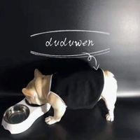 33 * 17,5 * 6 cm Hund oder Katzenschale PET C Bowls Fütterung Feeder Wasser Food Station Solution Welpen liefert 2C Süchtige