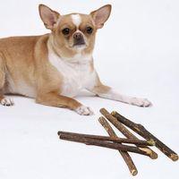 Cat Toys 10pc Apple Wood Chews Sticks Twigs For Small Pets Guinea Pig Parrot Pet Squirrel Natural Parrots Rabbits