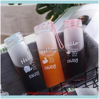 Bottles Drinkware Kitchen, Dining Bar Home & Garden Selling Sport Water Bottle Animal Gradation Frosted Colorful Glass Outdoor Portable Crea