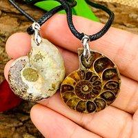 Amante Natural Quartz Pingentes Amonite Fósseis Fósseis Seashell Snail Oceano Reliquiae Conch Casal Colar Jóias Mineral Mineral Especimen Pendant Pendant