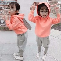 Kids Girls Clothing Sets Autumn Spring Toddler Baby Clothes Long Sleeve T-Shirt+Pant 2Pcs Children Suits