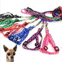 Collier de Pet Collier Collier de chien Out Porte Impression Couleur Fournitures Réglable Accessoires Exemption de l'affranchissement HWB6138