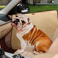 Dog Apparel 2Pcs Pet Car Door Protector Cover Waterproof 600D Oxford Cloth Protection Mats Non-slip Scratch Guard