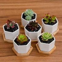 Potes de cerámica Bonsai Mini Blanco Macetas de porcelana Macetas Suculenta Jardín Indoor Casa Plantadores de viveros con chasis cyz3125