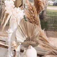 Decorative Flowers & Wreaths Palm Leaves Fan Leaf Pampas Grass Real Natural Plants Dried Flower Artificial Art Home Decoration Wedding Arran