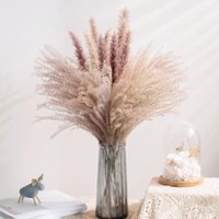 Decorative Flowers & Wreaths 30Pcs Real Dried Reed Bouquet Home Wedding Decoration Table Flores Preservadas Natural Pampas Grass Decor For R