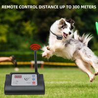 Canis canels 1-101 cão fence elétrica sem fio IP65 Pet Treinamento Collar Recarregável sistema de contenção eletrônica