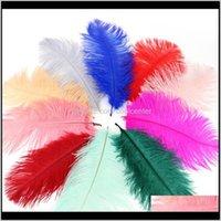 Evento de decoración Fiesta festiva Home Garden Drop Entrega 2021 Avestruz Pluma de pluma plumas de colores para manualidades Suministros de traje Mesa de miércoles