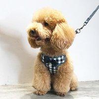 Colliers de chien Laisses Laisse en nylon de Nylon pour Petit Harness Harness Accesorios Para Gatos Mascotas Fashion Choses de Truelove Goo