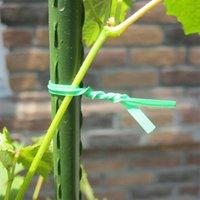 PVC Horticultural Tie 20m 30m 50m Garden Fleurs et arbres Reliure Fil Protection de l'environnement Plastic Plastic Plastic Wire Wire Ood6242