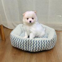 Kennels & Pens Hexagonal Pet Dog Bed Warming Cachorro House Soft Lounger Nest Baskets Fall Winter Plush Kennel For Cat Puppy Supplies