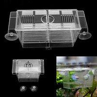 Acquario Pesce Tank Doppia razza Incubatore Allevamento Allevatore Box Box Trappola Acquario S / L Acquari