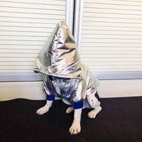 Осенняя зимняя собака одежда для собак двуногонаправленная домовая одежда кофты для малых и средних собак вниз куртка для домашних животных спортивная одежда домашние животные одежда хлопок пальто верхняя одежда