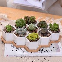 Keramik Bonsai-Töpfe Großhandel Mini Weiße Porzellan-Blumentöpfe Lieferanten für Saating Sukkulente Indoor Home Kindergarten Pflanzgefäße FWD8329