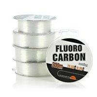 Высокое качество 300M FluoroCarbon Fable Line MonoFilament Nylon Сильное проволочное волокно покрытие для оплетки CARP