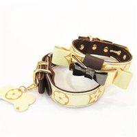 Neueste Design Pet Leashes Sets mit Box Mode Gedruckt Muster Teddy Schnauzer Halsbänder Neues Jahr Geschenk für Haustierleinen