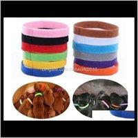 Leashes Supplies Home Garten Drop Lieferung 2021 Kragen Identifikation ID Halsband Band für Welp Welpen Kätzchen Hund Pet Katze Veet Praktische 12