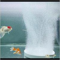 Pumps Accessoires Aquaria Pet Levert Home Garden Drop Levering 2021 Air Stone Aquarium Ronde Plaat Premium Nanoschaal Aquarium Zuurstof P