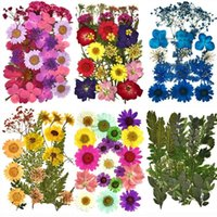 Bag Real Dried Flower Dry Plants For Candle Epoxy Resin Pendant Necklace Jewelry Making Craft DIY Accessories Decorative Flowers & Wreaths