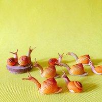 Decorative Objects & Figurines Sale~10Pcs snail doll House  miniatures lovely Cute fairy Garden Gnome moss Terrarium Decor crafts bonsai fig
