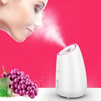 Fruit vegetable Facial Face Steamer household Spa beauty instrument Thermal nano spray water whitening face steamer machine CX200716