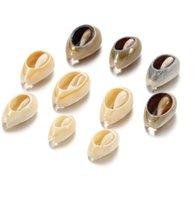 50 шт.лот натуральный небольшой моря Conch Phage Shell DIY ювелирные изделия находки аксессуары снабжения Seashell ожерелье браслет wmtuje t8kew beb 2085 v2