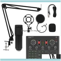 And Camping Hiking Sports & Outdoorscondenser Microphone Set With V9X Pro Sound Card Mixer For Live Broadcast Recording Computer Karaoke Sin