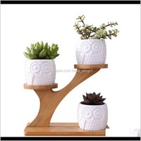 Planteurs Pot Simple Blanc Succulent Plant Porte-fleur Céramique Modèle de citrouille de citrouille en forme de bambou en forme de bambou en forme de bambou Ensemble T2001 W7DZO