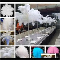 Украшение 2530см страус-производителей для праздничных украшений на день рождения Декорации стадии производительности поставки столовые свадебные центры XD2151 LNJ35