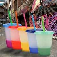 16Oz mix Color Changing Cold Cups Reusable Plastic Mugs Tumbler With Lid And Straw Drinkware Kitchen Gadgets FY4494