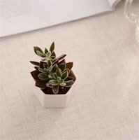 Céramique Bonsai Pots en gros Mini Publics de fleurs en porcelaine blanche Fournisseurs pour semelles Planteurs de pépinières à domicile intérieure succulente 1396 V2