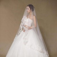 Bridal Veils 3 Meter Lace Edge Wedding No Comb Long White Ivory Accessories Veu De Noiva Com Renda