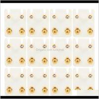 Bijoux sourcils 12Pairslot acier piercings stériles Gold Boucles d'oreilles goujons de naissance CZ GEM oreille cartilage tragus perçage pour oreillette pistolet 3wqvz