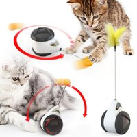 Cat Toys Funny Toy Swing Tumbler Interactive Balance Car And Catnip Kitten Indoor Chasing Pet Relieve Boredom Supplies