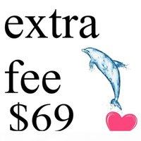 Link speciale per il costo aggiuntivo $ 69