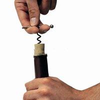 Kreative multifunktionale Öffner Mini Outdoor Edelstahl roter Korkenzieher Wein Flaschenöffner mit Ring Keychain GWD6424