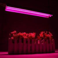 Lampes de barres LED poussez 500W Lampe à spectre complet 50cm Tube double pour serre Hydroponic Plant intérieur Planling US / EU
