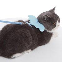 Anjo bonito colars adjuestable animal de estimação gato chicote e trela conjunto para cães pequenos gatinho 3 cores leva acessórios de trelas