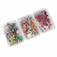 1 Box Real Getrocknete Blume Trockenpflanzen Für Aromatherapie Kerze Epoxidharz Anhänger Halskette Schmuck Machen Handwerk DIY Zubehör 776 R2
