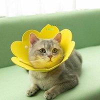 고양이 칼라 리드 해바라기 elizabethan 반지 Eva 스폰지 얇은 머리띠 개 애완 동물 안티 릭 스크래치 칼라