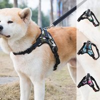 Dog Collars & Leashes Nylon All Seasons Pet Collar Stretchable Leather Belt Double Lock Durable Breathable Comfortable Washable Bling Person